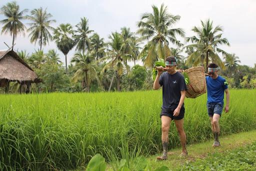 mo-hinh-kinh-doanh-farmstay