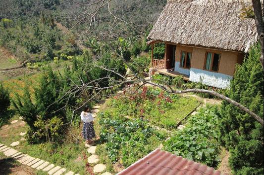 son-tinh-farmstay