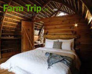 không gian ngủ của farm