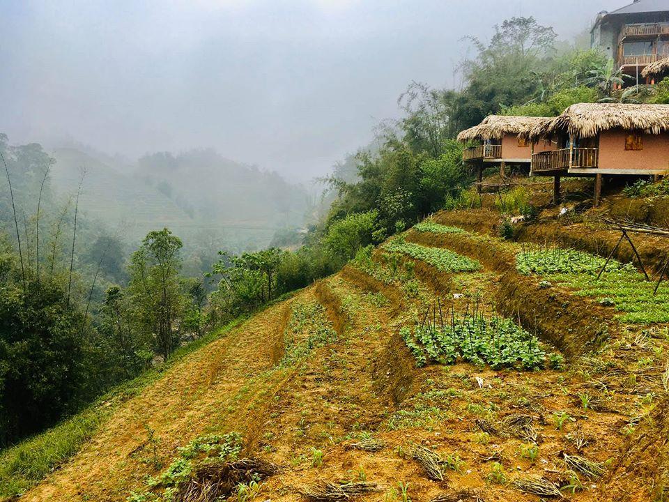 farmstay-nghi-duong