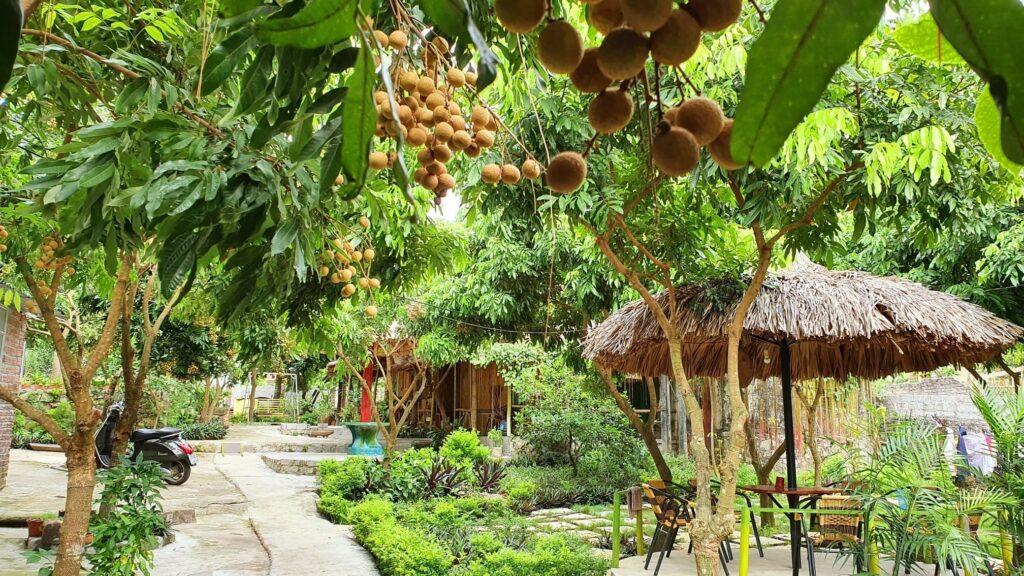 farmstay-mo-hinh-hot