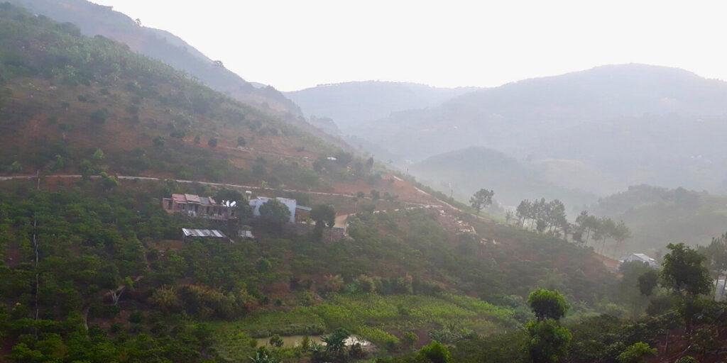 Ovi-coffee-farmstay