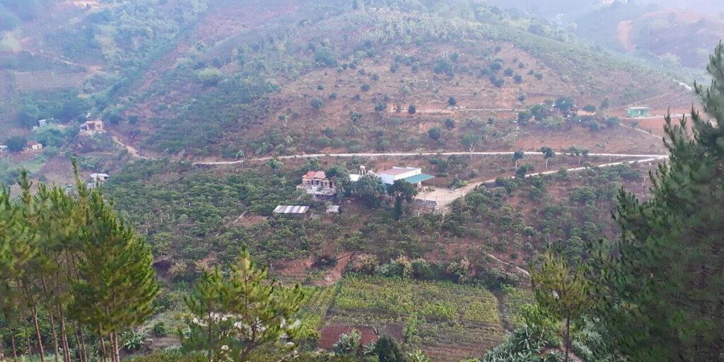 canh-dep-tai-ovi-coffee-farmstay