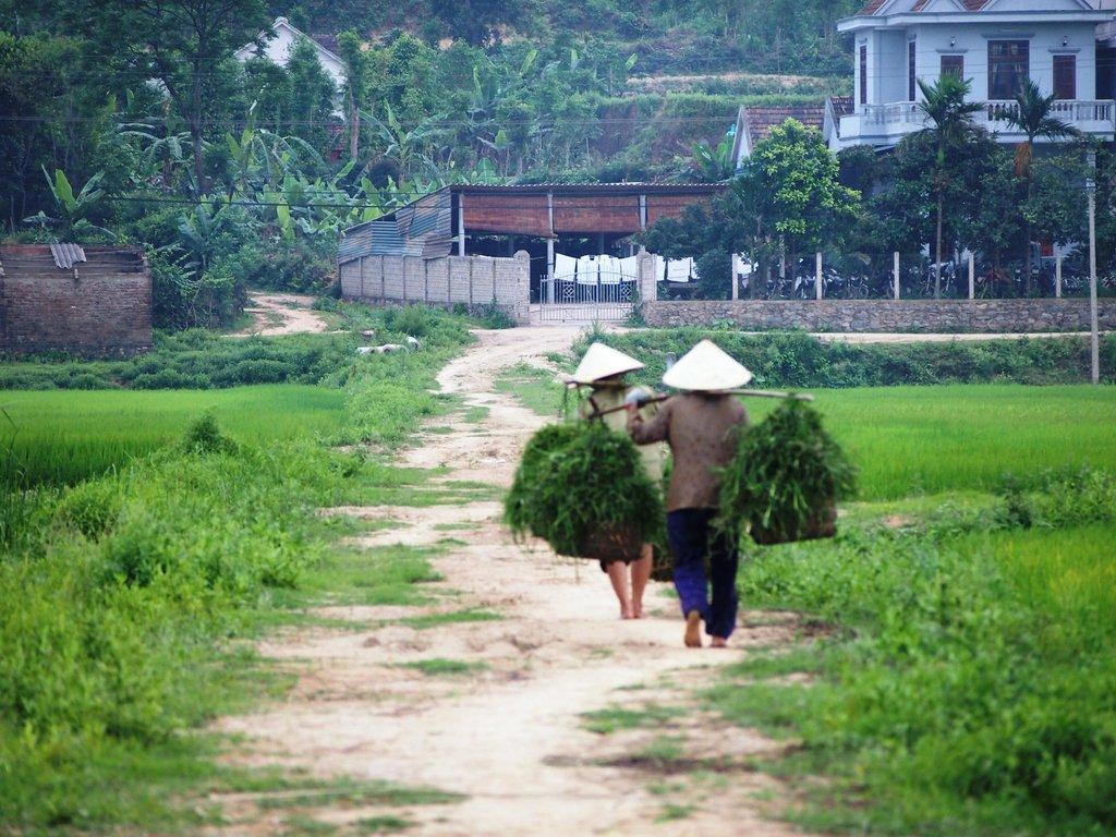 Rose's-farmstay-da-nang