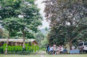 An Nhiên Farm