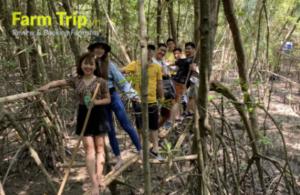 trải nghiệm rừng ngập măn