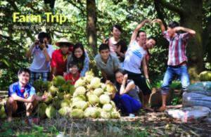 Giới thiệu Trảng Bàng Farmstay Tây Ninh