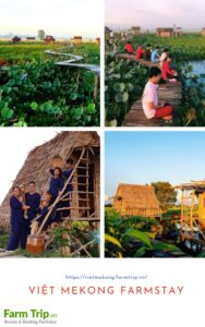 Giới thiệu Việt Mekong farmstay