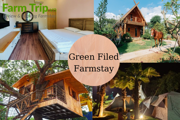 Green Field farmstay