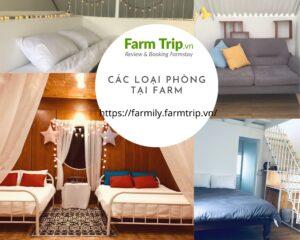 Các loại phòng tại Farm'ily Farmstay