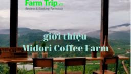 gioi thieu Midori Coffee Farm